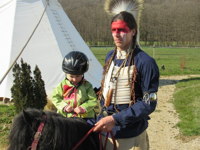 poneys (Copier)